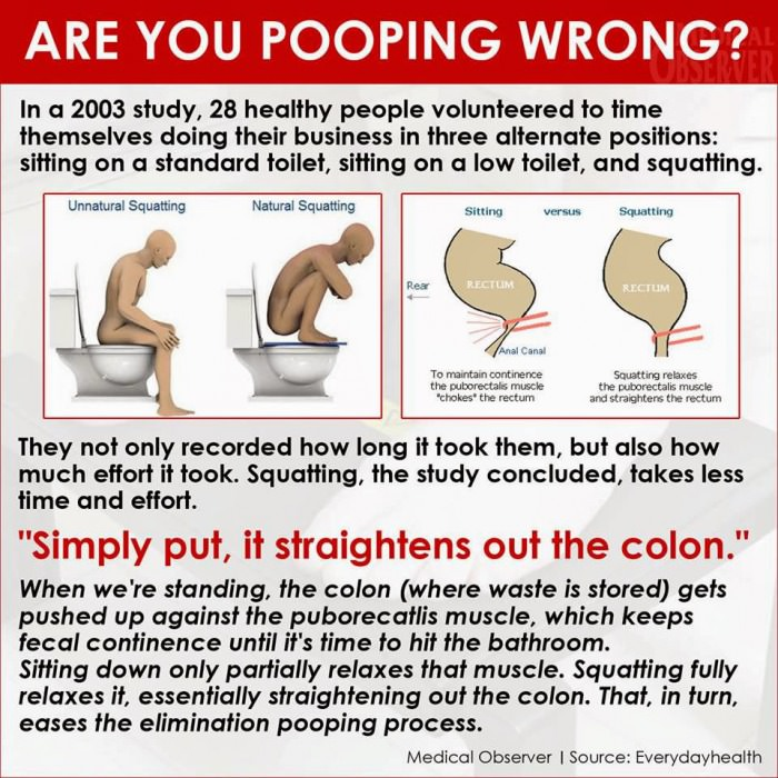 what-is-the-proper-way-to-poop-featured-1